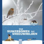 20140161-digibordles-van-suikerbomen-tot-sneeuwhelden-1